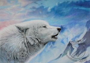 wake the white wolf